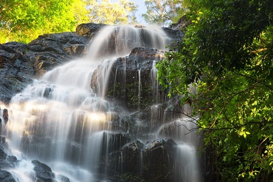 Chasing Waterfalls at Kondalilla National Park
